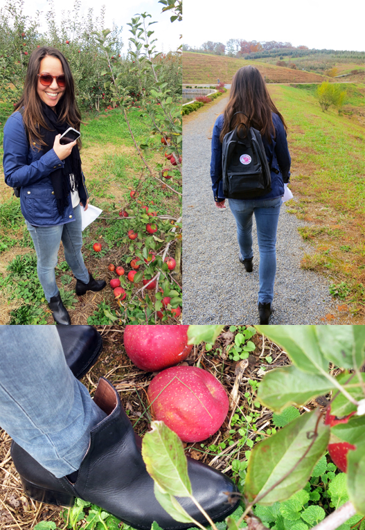 apple picking outfit details