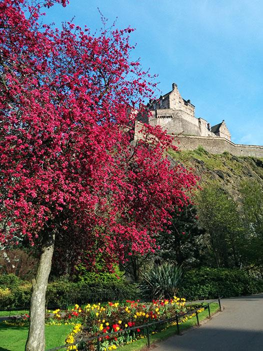spring-edinburgh