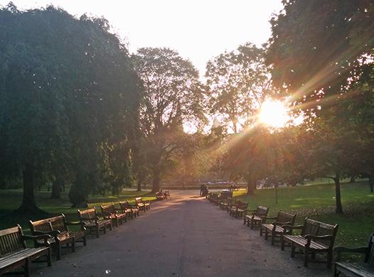 Princes Street Gardens dusk