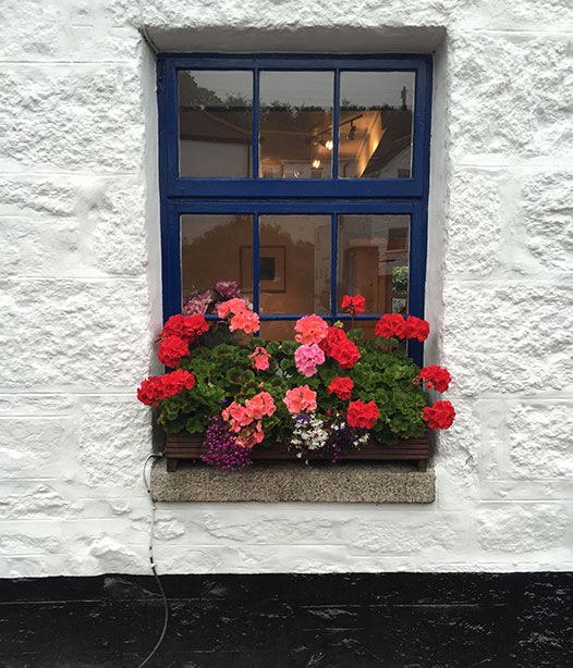 Cottage-window